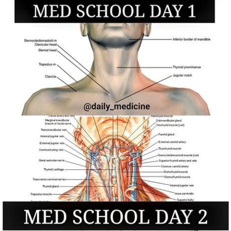 Image result for medical student memes