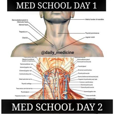 Image result for medical student memes